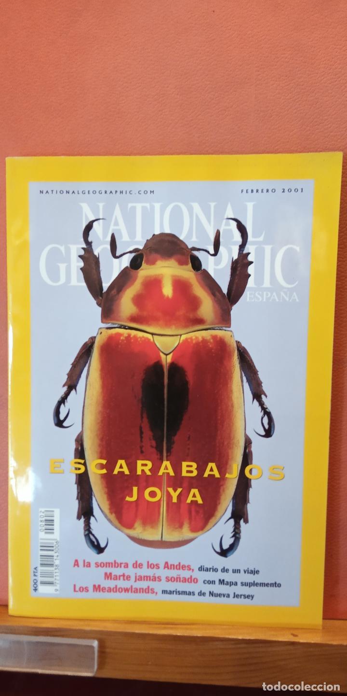 NATIONAL GEOGRAPHIC ESPAÑA. ESCARABAJOS JOYA. FEBRERO 2001. (Coleccionismo - Revistas y Periódicos Modernos (a partir de 1.940) - Revista National Geographic)