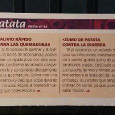 Coleccionismo de Revista Pronto: FICHA Nº 46. LOS ALIMENTOS. REMEDIOS Y TRUCOS REVISTA PRONTO. PATATA.. Lote 185959725