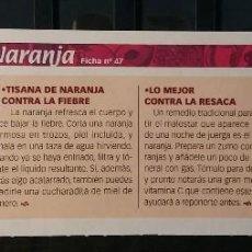 Coleccionismo de Revista Pronto: FICHA Nº 47. LOS ALIMENTOS. REMEDIOS Y TRUCOS REVISTA PRONTO. NARANJA.. Lote 185960667