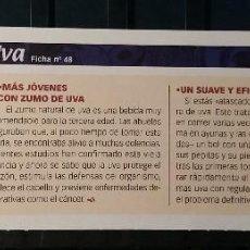 Coleccionismo de Revista Pronto: FICHA Nº 48. LOS ALIMENTOS. REMEDIOS Y TRUCOS REVISTA PRONTO. UVA.. Lote 185961383