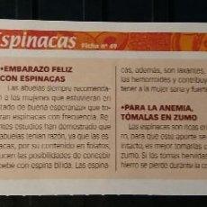 Coleccionismo de Revista Pronto: FICHA Nº 49. LOS ALIMENTOS. REMEDIOS Y TRUCOS REVISTA PRONTO. ESPINACAS.. Lote 185961940