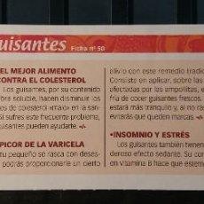 Coleccionismo de Revista Pronto: FICHA Nº 50. LOS ALIMENTOS. REMEDIOS Y TRUCOS REVISTA PRONTO. GUISANTES.. Lote 185969218