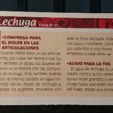 Coleccionismo de Revista Pronto: FICHA Nº 51. LOS ALIMENTOS. REMEDIOS Y TRUCOS REVISTA PRONTO. LECHUGA.. Lote 185969838