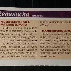 Coleccionismo de Revista Pronto: FICHA Nº 55. LOS ALIMENTOS. REMEDIOS Y TRUCOS REVISTA PRONTO. REMOLACHA.. Lote 185997393