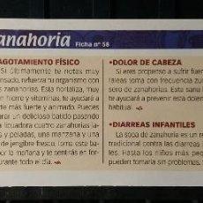 Coleccionismo de Revista Pronto: FICHA Nº 58. LOS ALIMENTOS. REMEDIOS Y TRUCOS REVISTA PRONTO. ZANAHORIA.. Lote 186001052