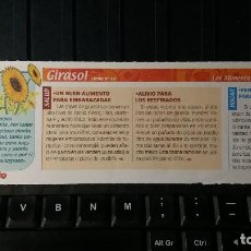 Coleccionismo de Revista Pronto: FICHA Nº 60. LOS ALIMENTOS. REMEDIOS Y TRUCOS REVISTA PRONTO. GIRASOL.. Lote 186013541