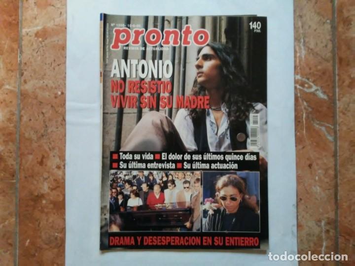 REVISTA PRONTO N° 1205 10-6-95 JUNIO AÑO 1995 ANTONIO FLORES ANEXO LOLA DE ESPAÑA 3 (Papel - Revistas y Periódicos Modernos (a partir de 1.940) - Revista Pronto)