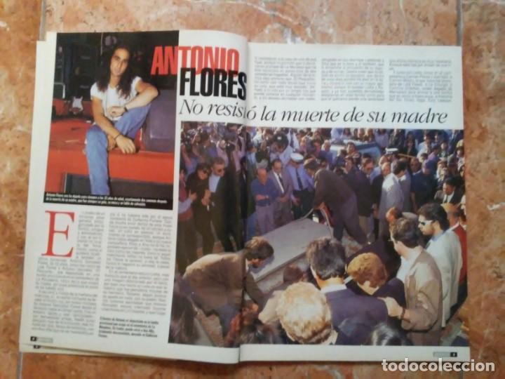 Coleccionismo de Revista Pronto: Revista Pronto n° 1205 10-6-95 junio Año 1995 Antonio Flores Anexo Lola de España 3 - Foto 3 - 197431097