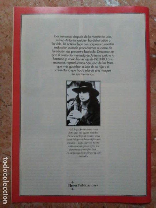 Coleccionismo de Revista Pronto: Revista Pronto n° 1205 10-6-95 junio Año 1995 Antonio Flores Anexo Lola de España 3 - Foto 13 - 197431097