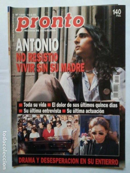 Coleccionismo de Revista Pronto: Revista Pronto n° 1205 10-6-95 junio Año 1995 Antonio Flores Anexo Lola de España 3 - Foto 24 - 197431097