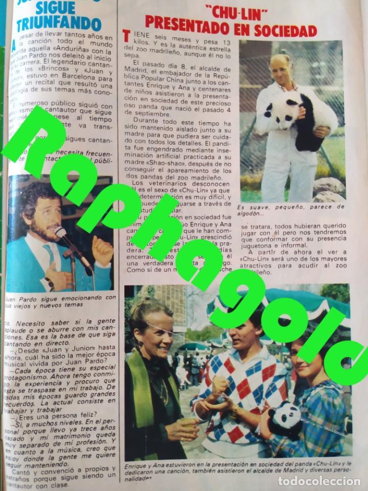 Coleccionismo de Revista Pronto: Revi PRONTO 568 Julio Iglesias Camilo Sesto Massiel Ana Torroja Mecano Sonia Martínez Remedios Amaya - Foto 9 - 261232505