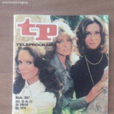 Coleccionismo de Revista Teleprograma: REVISTA TP TELEPROGRAMA Nº 667 - LOS ANGELES DE CHARLIE 1979. Lote 278833038