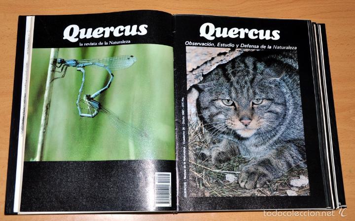 Coleccionismo de Revista Temas Españoles: DETALLE 3. - Foto 4 - 59529699