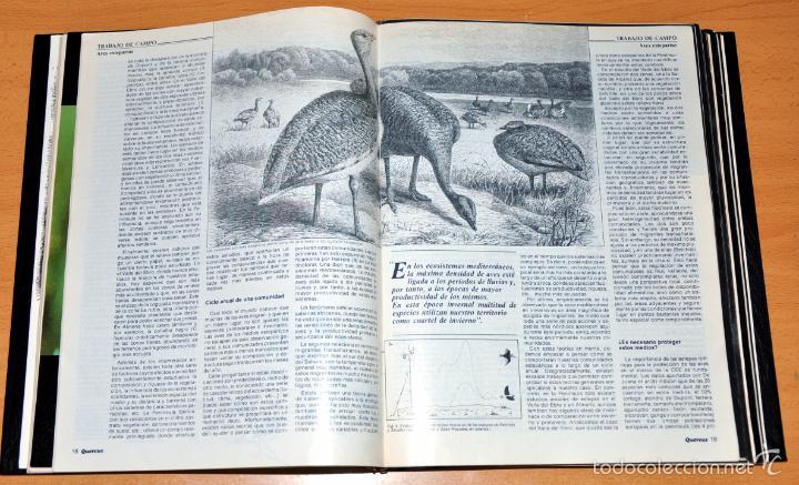 Coleccionismo de Revista Temas Españoles: DETALLE 4. - Foto 5 - 59529699