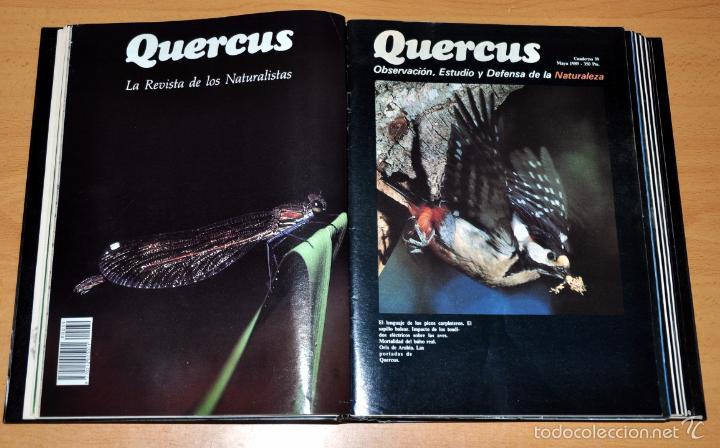 Coleccionismo de Revista Temas Españoles: DETALLE 3. - Foto 4 - 59530191