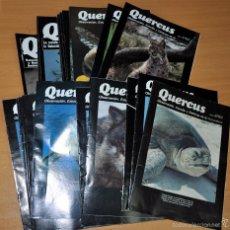 Coleccionismo de Revista Temas Españoles: LOTE 24 REVISTAS QUERCUS (Nº 49 A 72) - OBSERVACIÓN, ESTUDIO Y DEFENSA DE LA NATURALEZA - 1990/1992. Lote 59531179