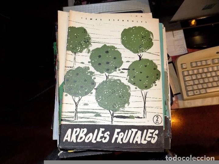 ARBOLES FRUTALES. NUM 336. LUIS AGUIRRE PRADO. MADRID, 1957 (Papel - Revistas y Periódicos Modernos (a partir de 1.940) - Revista Temas Españoles)