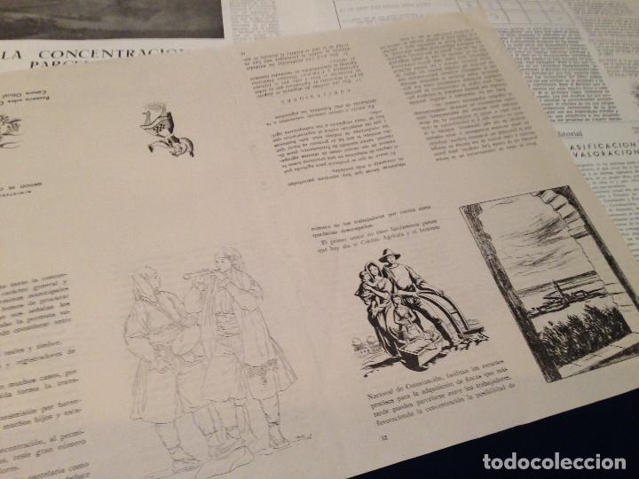 Coleccionismo de Revista Temas Españoles: CONCENTRACION PARCELARIA,HOJA INFORMATIVA TIPO PERIODICO.AÑO1954.GUADALAJARA,VALLADOLID,CUENCA. - Foto 6 - 201517756