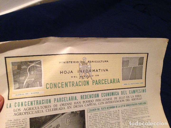 Coleccionismo de Revista Temas Españoles: CONCENTRACION PARCELARIA,HOJA INFORMATIVA TIPO PERIODICO.AÑO1953.ORENSE,OLIVARES DE JUCAR.ZUÑIGA... - Foto 3 - 201519472