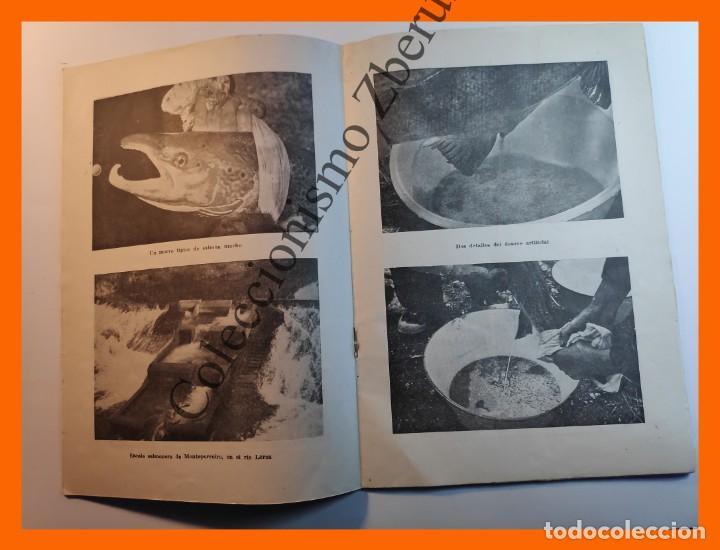 Coleccionismo de Revista Temas Españoles: Rios Salmoneros . Temas Españoles Nº 234 - Luis Aguirre Prado - Foto 2 - 235915735