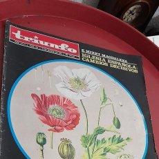 Coleccionismo de Revista Temas Españoles: REVISTA TRIUNFO. NUM: 494 , 1972.. Lote 254906315