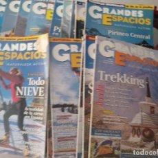 Coleccionismo de Revista Temas Españoles: GRAN LOTE DE REVISTAS GRAN ESPACIO. Lote 293203288