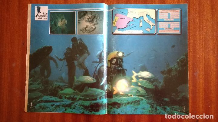 Coleccionismo de Revista Tiempo: REVISTA TIEMPO Nº 16-1982 - ENTREVISTA A FRANCISCO LIMOUSIN - ANGEL SOPEÑA - RAFAEL RULLAN - FELLINI - Foto 4 - 84941688