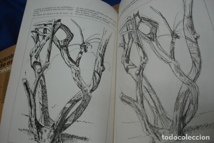 Coleccionismo de Revista Tiempo: CURSO DE DIBUJO CEAC 1980 - LE FALTAN NÚMEROS - Foto 4 - 136367926