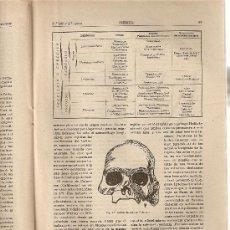 Coleccionismo de Revistas y Periódicos: REVISTA IBERICA 103.AÑO 1947.AMIANTO NACIONAL.PREHISTORIA.HOMBRE TERCIARIO.. Lote 9080174