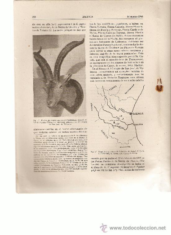 REVISTA IBERICA 61.AÑO 1946.EL PANTANO DE SANTA TERESA.SALAMANCA.LA CABRA HISPANICA.VALENCIA. (Coleccionismo - Revistas y Periódicos Modernos (a partir de 1.940) - Otros)