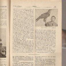 Coleccionismo de Revistas y Periódicos: REVISTA IBERICA 131.AÑO 1948 .EL AGUILA AZOR.GERONA.. Lote 9173338