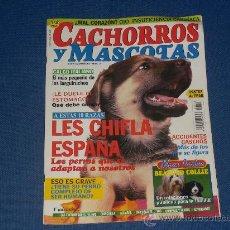 Coleccionismo de Revistas y Periódicos: REVISTA CACHORROS Y MASCOTAS Nº 14 CREO QUE DEL AÑO 1996. Lote 20497917