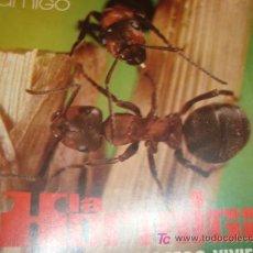 Coleccionismo de Revistas y Periódicos: ZOO AMIGO 1974 LA HORMIGA. Lote 11839637