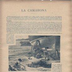 Coleccionismo de Revistas y Periódicos: LA CAMARONA / RELATO DE EMILIA PARDO BAZÁN- 1896. Lote 17787089