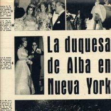 Coleccionismo de Revistas y Periódicos: DUQUESA DE ALBA 1959 NUEVA YORK 2 HOJAS REVISTA. Lote 17998077