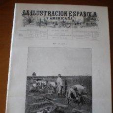Coleccionismo de Revistas y Periódicos: ILUSTRACION ESPAÑOLA/AMERICANA (08/07/99) SIEGA PELLICER DE ACHA ELSLEY SANCHA FRANCIA . Lote 34812690