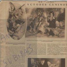 Coleccionismo de Revistas y Periódicos: REVISTA 1930 PERROS ACTORES CARAVACA JATIVA GANDIA FIESTAS DEL PILAR VILLAGARCIA DEL LLANO CUENCA. Lote 24679302