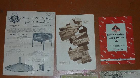 Coleccionismo de Revistas y Periódicos: Lote de papeles avicolas: catalogos, revistas... avicola. Avicultura. Todo de años 30s 40s 50s. - Foto 2 - 67402619
