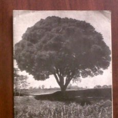 Coleccionismo de Revistas y Periódicos: REVISTA DEL INSTITUTO AGRICOLA CATALAN DE SAN ISIDRO-ABRIL 1956. Lote 30139255