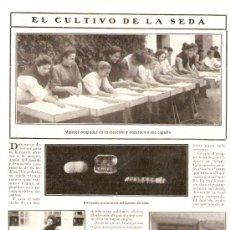 Coleccionismo de Revistas y Periódicos: RECORTE PRENSA.AÑO 1908.CULTIVO DE LA SEDA.GUSANOS DE SEDA.UNIVERSIDAD.ALCALA DE HENARES.CARABANCHEL. Lote 30973752