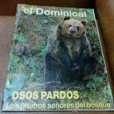 Coleccionismo de Revistas y Periódicos: REV DOMINICAL 11/92 OSOS PARDOS AMPLIO RPTJE.ANTONIO SAURA, TANZANIA,SEGOVIA -SUS TRAJES,EDIMBUR. Lote 31033962