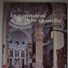 Colecionismo de Revistas e Jornais: TEMAS DE NUESTRA ANDALUCIA. MONOGRAFICOS LA CATEDRAL DE GUADIX N.19. Lote 218437138