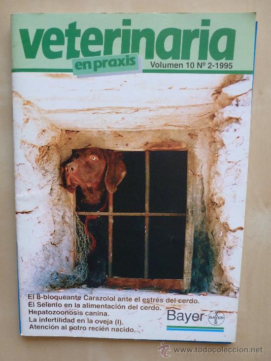 VETERINARIA EN PRAXIS VOL 10 Nº2 1995 (Coleccionismo - Revistas y Periódicos Modernos (a partir de 1.940) - Otros)