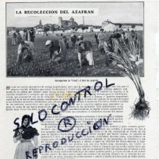 Collectionnisme de Revues et Journaux: AZAFRAN 1911 RECOLECCION AZAFRAN 1911 ALBACETE-CIUDAD REAL-TOLEDO-LA MANCHA 2 HOJAS REVISTA. Lote 34610101
