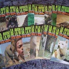 Coleccionismo de Revistas y Periódicos: LA AVENTURA DE LA VIDA - FELIX RODRIGUEZ DE LA FUENTE. Lote 37524827