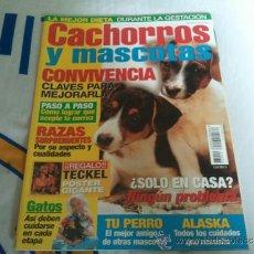 Coleccionismo de Revistas y Periódicos: REVISTA CACHORROS Y MASCOTAS CONVIVENCIA COMO NUEVA. Lote 36675743