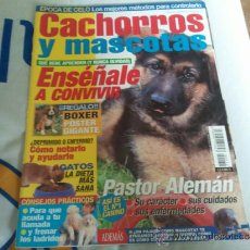 Coleccionismo de Revistas y Periódicos: REVISTA CACHORROS Y MASCOTAS ENSEÑALE A CONVIVIR COMO NUEVA. Lote 36675937
