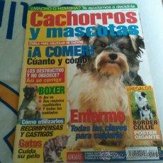 Coleccionismo de Revistas y Periódicos: REVISTA CACHORROS Y MASCOTAS ¡ A COMER! COMO NUEVA. Lote 36675986