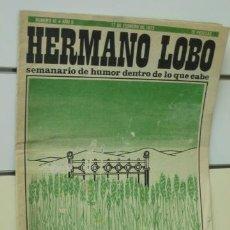Coleccionismo de Revistas y Periódicos: HERMANO LOBO Nº 41. Lote 37280237