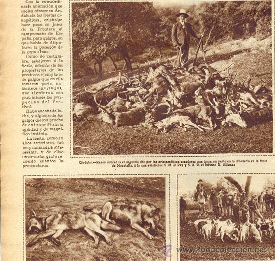 Coleccionismo de Revistas y Periódicos: AÑO 1930 CAMPEONATO DE GALGOS EN JEREZ CACERIA MORATALLA FUTBOL CLUB BARCELONA ESPAÑOL LIGA - Foto 2 - 37468233
